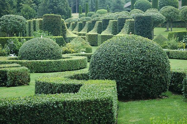 jardin-paysagiste